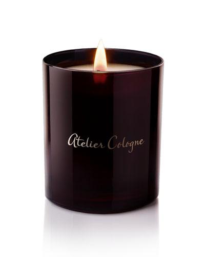Orange Sanguine Candle
