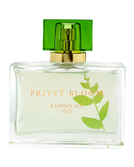 Hampton Sun Privet Bloom Eau de Parfum, 1.7