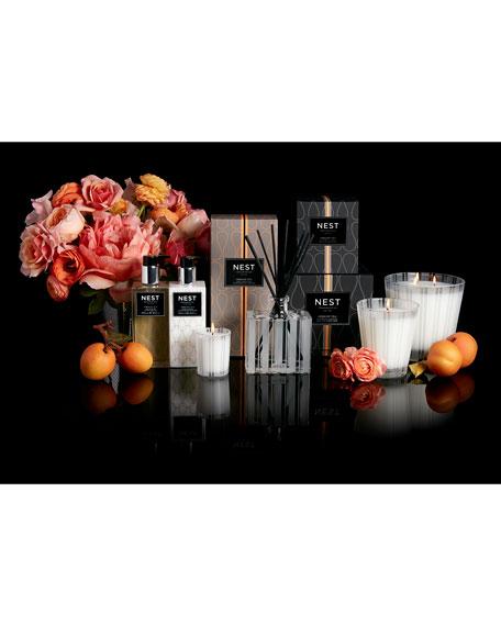 Nest Fragrances Apricot Tea Classic Candle