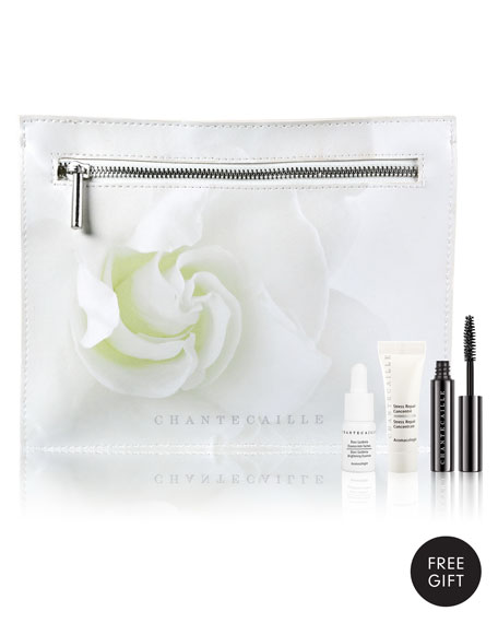 Receive a free 4-piece bonus gift with your $325 Chantecaille purchase