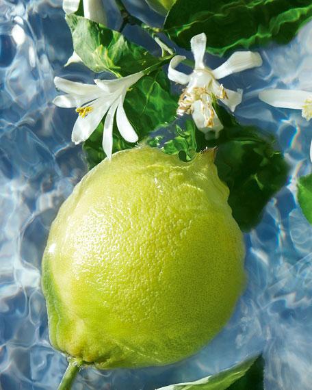Bergamote Calabria Aqua Allegoria Eau de Toilette Perfume, 4.2 oz.