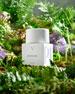 PHLUR Sandara Bottle Eau de Parfum, 1.7 oz./ 50 mL