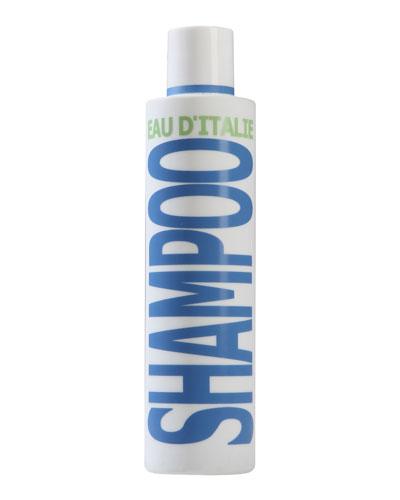 Shampoo  6.8 oz./ 200 mL