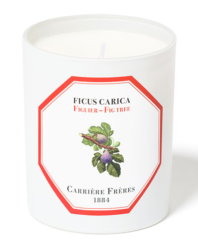 Fig Tree Candle  6.5 oz. / 184 g