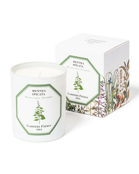 Carriere Freres Spearmint Candle, 6.5 oz. / 184 g