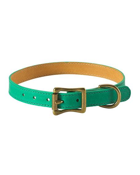 Personalized Medium Dog Collar