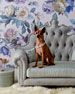 Haute House Isabella Dog Bed