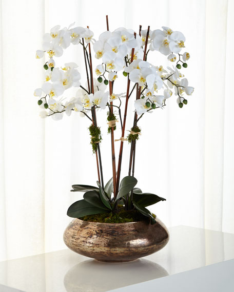John-Richard Collection Ice White Phalaenopsis Faux-Floral