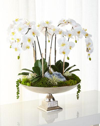 T C Fl Company Orchids Succulents Faux Arrangement
