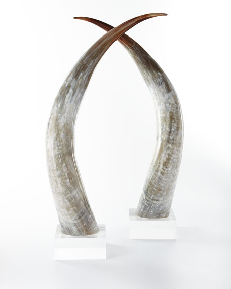 Ankole Large Horns, Set of 2