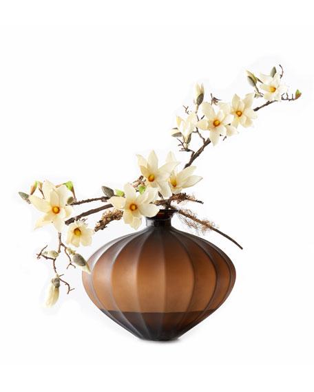 Bronze Magnolia