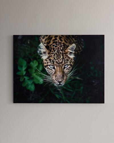 Hide & Seek  Photography Print Handmade HD Metal & Acrylic Art