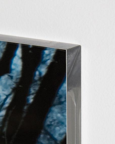 "Four Hands Art Studio ""Into the Woods"" Photography Handmade HD Metal & Acrylic Print Art"