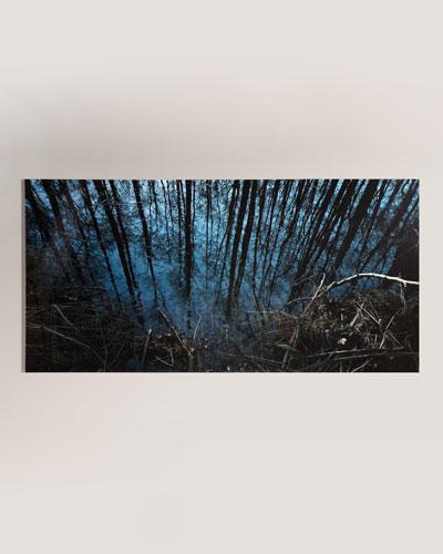 Into the Woods Photography Handmade HD Metal & Acrylic Print Art