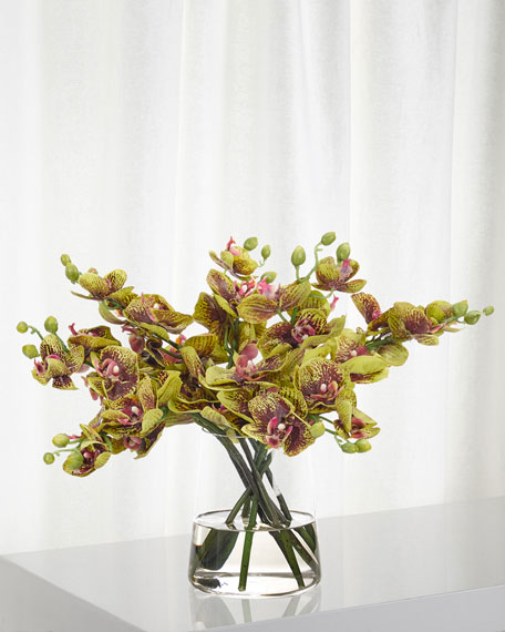NDI Orchid Phalaenopsis Faux Florals in Glass Vase