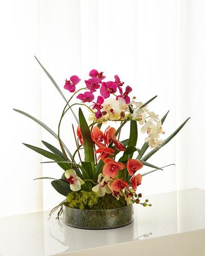 Atrium Orchids Arrangement