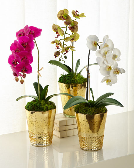T&C Floral Company Orchids in Gold Mercury Containers