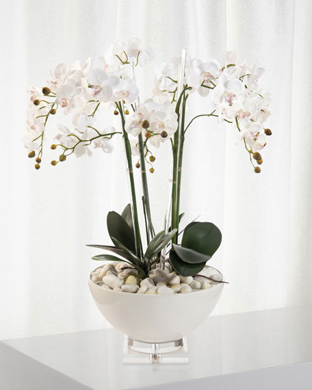 John-Richard Collection White Orchids in Ceramic Pot
