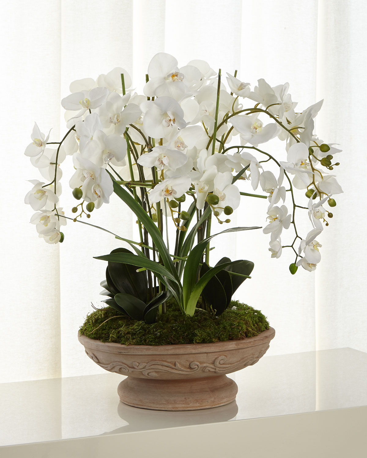 John-Richard Collection Irresistible Phalaenopsis Arrangement