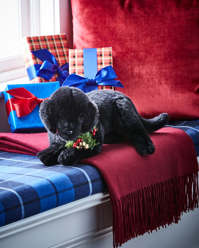 Christmas Black Lab Puppy