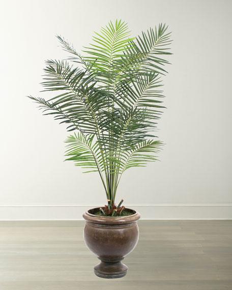 NDI Areca Palm in Bronze Pedestal Urn