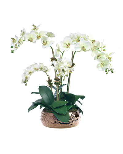 Pale Green Orchids in Bronze Ceramic Bowl