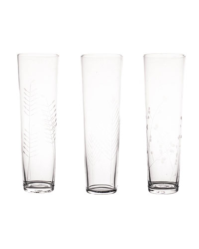 Sienna Botanical Etched Champagne Glasses  Set of 6