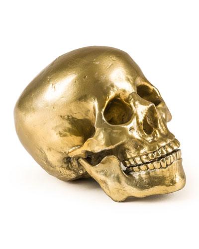 Diesel Human Skull