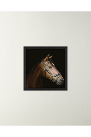 "Paragon Decors ""A Horse With No Name"" Art Print"
