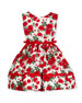 Red Roses Sleeveless Dress, Size 12M-3Y