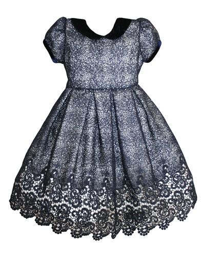 Floral Mesh Lace Velvet-Trim Dress  Size 2-8