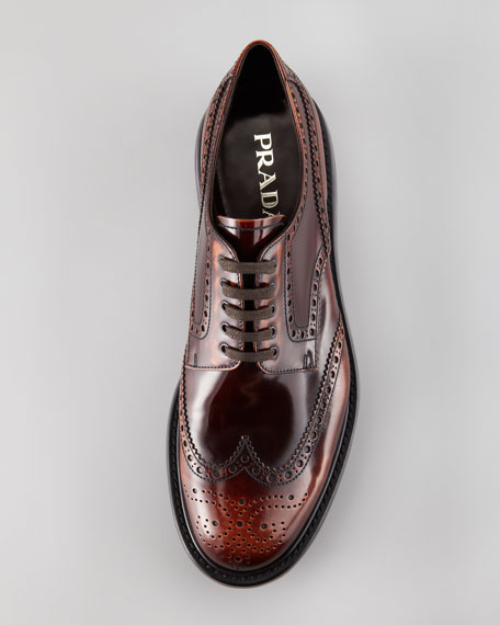 Levitate Spazzolato Wing-Tip, Brown