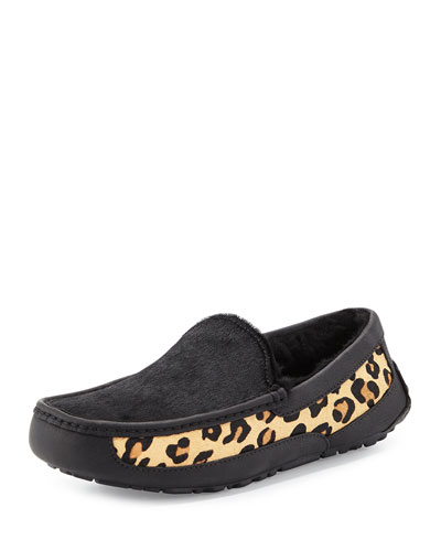 Ascot Calf-Hair Leopard Printed Slipper, Black
