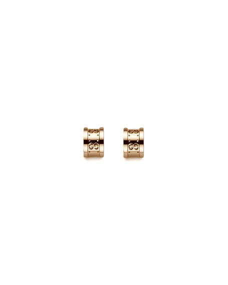 Icon Twirl Post Earrings
