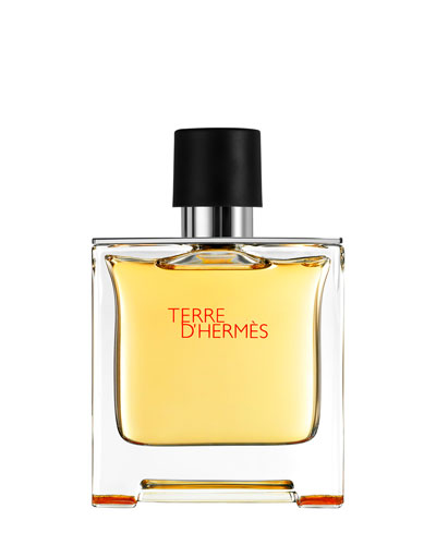 Terre d'Hermès – Pure Perfume Natural Spray  2.5 oz  6.7 oz