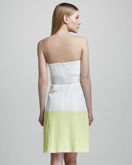 Obelisk Strapless Dress