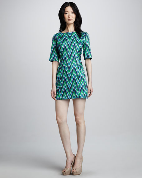 Carina Printed Twill Dress