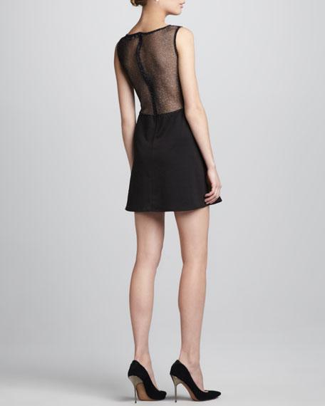 Lulu Shimmery Mesh-Inset Dress