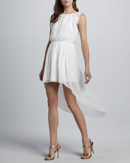Jocelyn Shimmery High-Low Dress