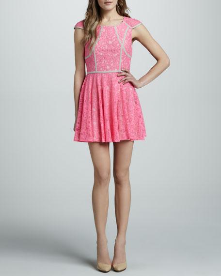 Mr. Jones Contrast-Trim Lace Dress