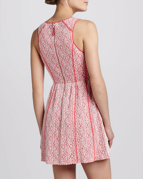 Contrast-Overlay Dress