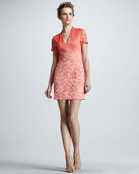 Ombre Lace Short-Sleeve Dress