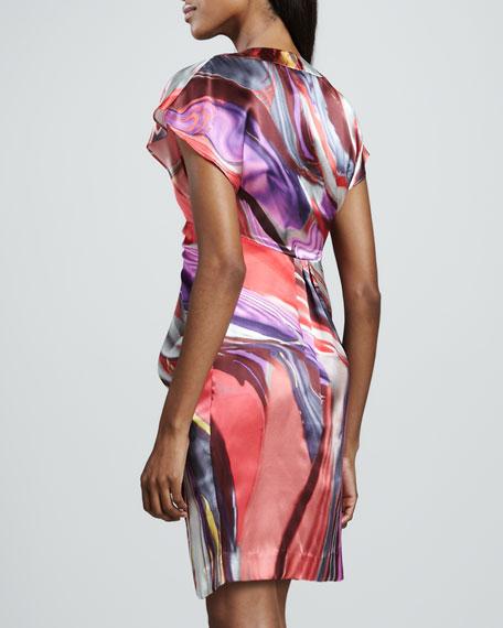 Alcia Silk Print Dress