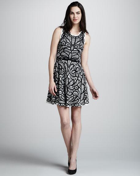 Lace Combo Sleeveless Dress