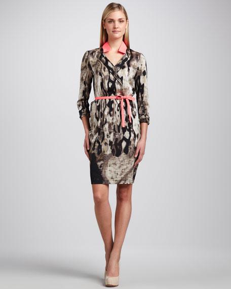 Belen Printed Shirtwaist Dress