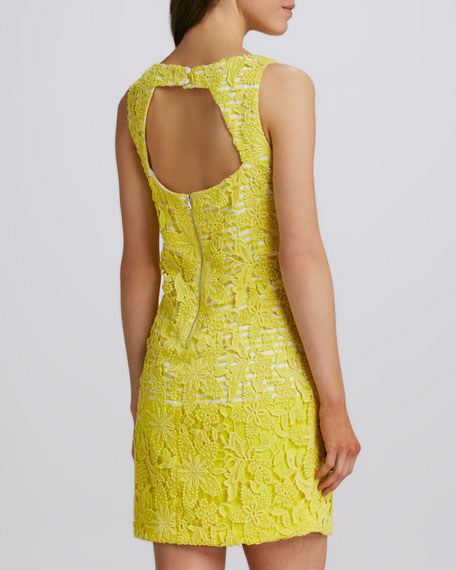 Lace Sleeveless Open-Back Dress