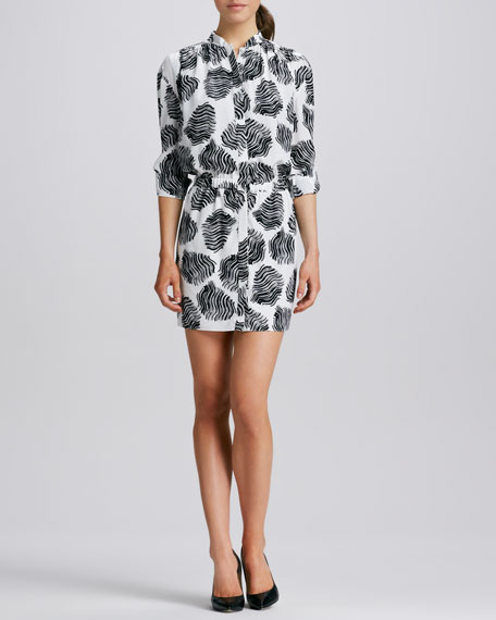 Dendra Printed Long-Sleeve Shirtdress