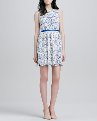 June Sleeveless Lace Overlay Dress