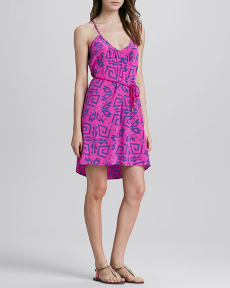 Alba Printed Silk Dress