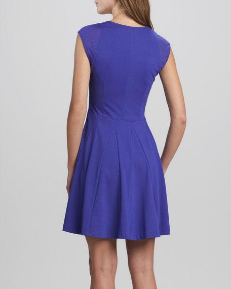Elena Mesh Flared Dress